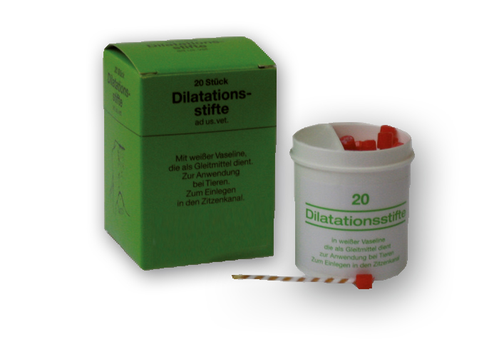 Dilatationszitzenstift